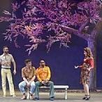 עץ השקד של נאני